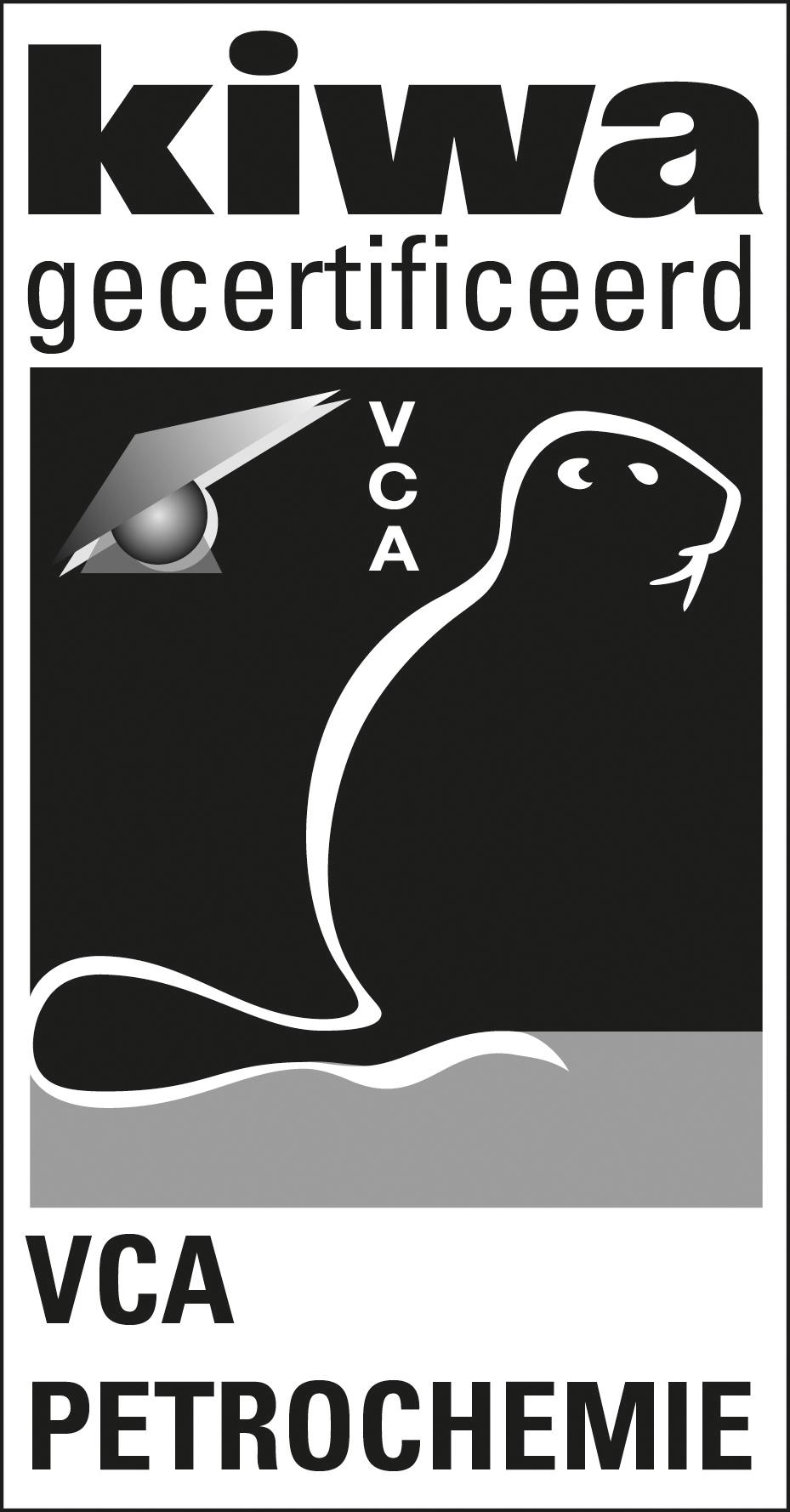 VCA P